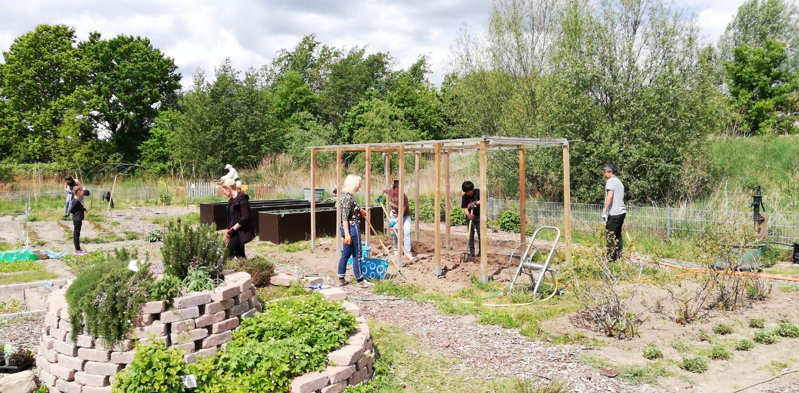 Gartenprojekt sucht Mitstreiter